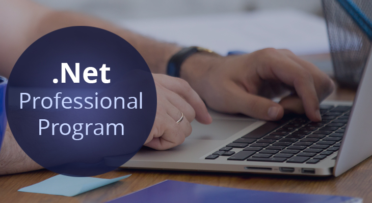 dot net professional program