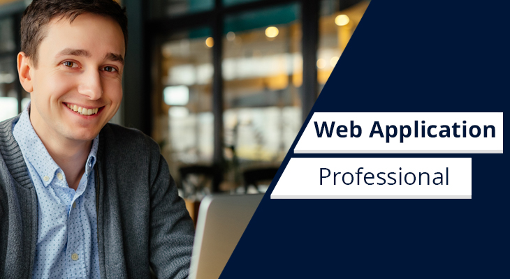 web application professional