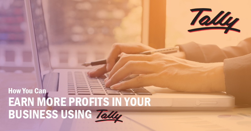 How You Can Earn More Profits In Your Business Using Tally